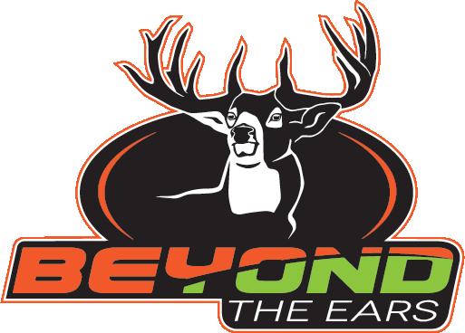 Beyond The Ears